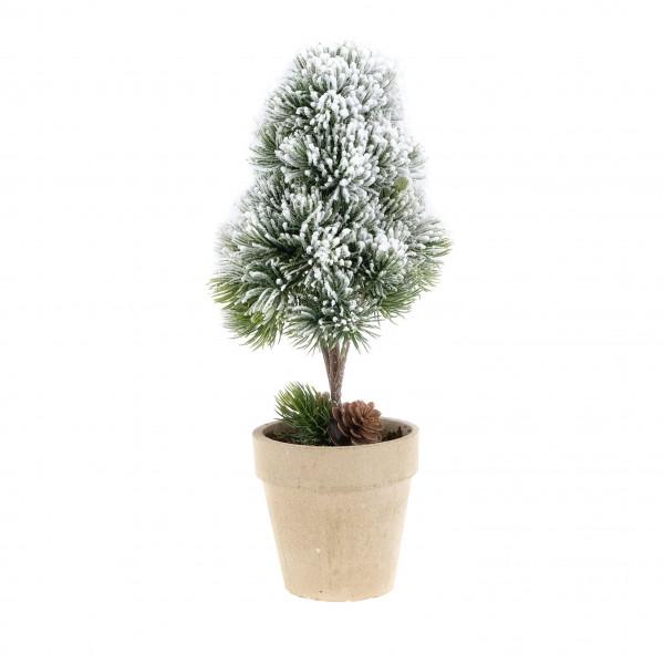 Tannenbaum im Topf beschneit H:26cm